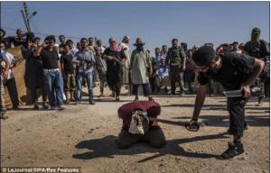 syria-gardanzadan